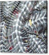 Skeletel Acrylic Print
