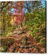 Skeleton Of Graveyard Fields Acrylic Print