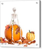 Skeleton Sitting On Pumpkin Acrylic Print