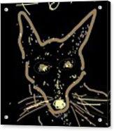 Sketch Of Fox By Kathy Barney Acrylic Print