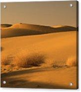 Skn 1124 Desert Landscape Acrylic Print
