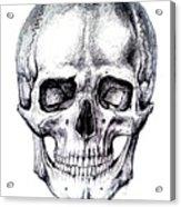 Skull Drawing Acrylic Print