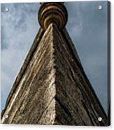 Sky Catle Acrylic Print