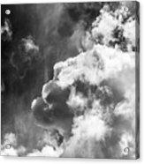 Sky Life Regal Acrylic Print