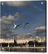 Sky Acrylic Print by Milan Mirkovic