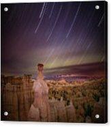 Sky Scraper Acrylic Print