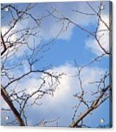 Look At The Blue Sky Acrylic Print