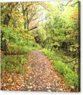 Skylands Trail H Acrylic Print