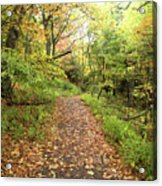 Skyline Trail P Acrylic Print