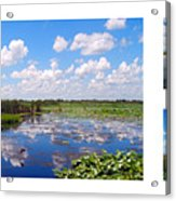Skyscape Reflections Blue Cypress Marsh Florida Collage 1 Acrylic Print