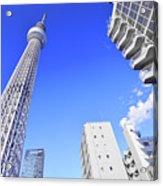 Skytree In Blue Acrylic Print