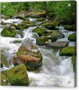 Slate Creek, Nez Perce National Forest, Idaho Acrylic Print