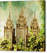 Slc Vintage Green Acrylic Print by La Rae  Roberts