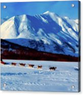 Sledding In Russia Acrylic Print