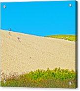 Sleeping Bear Dune Climb In Sleeping Bear Dunes National Lakeshore-michigan Acrylic Print