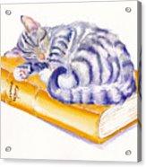 Sleeping Beauty Acrylic Print