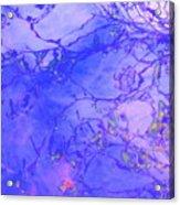 Beauty Of Lucid Sleep Acrylic Print