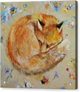 Sleeping Fox Acrylic Print
