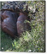 Sleeping In The Jungle - Stone Face In Forest Acrylic Print