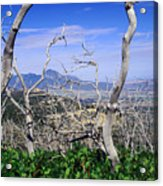 Sleeping Ute Mountain - From Mesa Verde National Park Acrylic Print