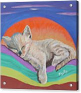 Sleepy Time Acrylic Print