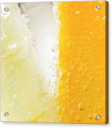 Slice Of Orange And Lemon In Cocktail Glass Acrylic Print