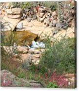 Slide Rock With Pink Wildflowers Acrylic Print
