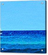 Sloop Sailing On Blue Acrylic Print