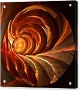 Slot Canyon Spiral Acrylic Print
