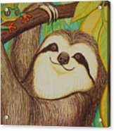 Sloth And Frog Acrylic Print