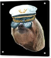 Sloth Aviator Glasses Captain Hat Sloths In Clothes Acrylic Print