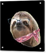 Sloth Black Glasses Red Scarf Sloths In Clothes Acrylic Print