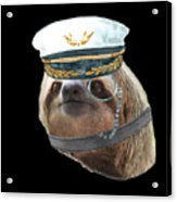 Sloth Monacle Captain Hat Sloths In Clothes Acrylic Print