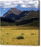 Slough Cree Vista Acrylic Print