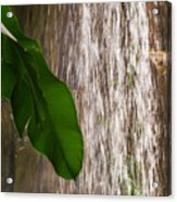Slow Motion Tropical Waterfall Acrylic Print