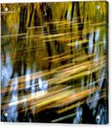 Slow Moving Stream - 2959 Acrylic Print
