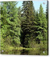 Small Country Pond Acrylic Print