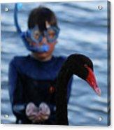 Small Human Meets Black Swan Acrylic Print