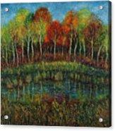 Small Lake. Acrylic Print