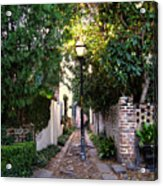 Small Lane In Charleston Acrylic Print