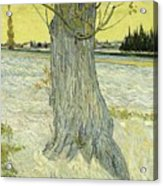 Small Pear Tree In Blossom Arles, April 1888 Vincent Van Gogh 1853  1890 Acrylic Print