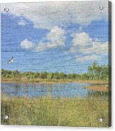 Small Pond With Weathered Wood Acrylic Print