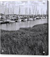 Small Sailboat Harbor Monochrome  Acrylic Print