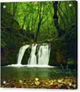 Small Waterfall In Forest Acrylic Print