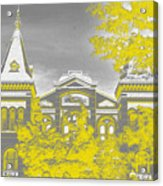 Smithsonian Chrome Acrylic Print