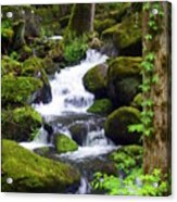 Smokey Mountain Stream Acrylic Print
