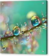 Smokey Rainbow Drops Acrylic Print by Sharon Johnstone