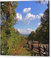 Smoky Mountain Scenery 12 Acrylic Print