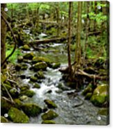 Smoky Mountain Stream 2 Acrylic Print