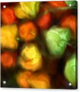 Smooth Peppers Acrylic Print